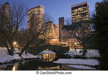 Central Park in winter - Central Park by the pond on 59th...