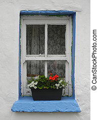 Irish traditional cottage window with net curtain, windowbox...