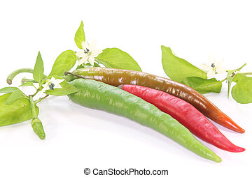 Chilis - fresh red and green chili peppers with leaves and...