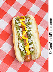 Hotdog on picnic table - A scrumptious barbecued hotdog with...