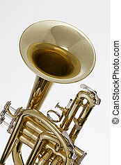 Cornet Trumpet Isolated on White - A gold brass cornet or...