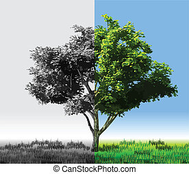 Card with abstract tree. Vector
