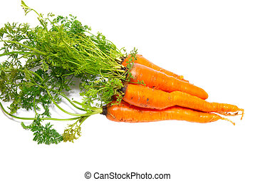 Carrots isolated on white.
