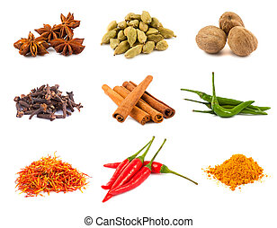 Collection of various spices isolated on white background
