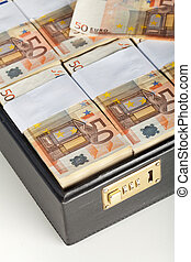 Euro banknotes in suitcase - detail