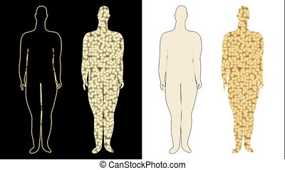 Slimming process shown fat cells - Slimming process, with...