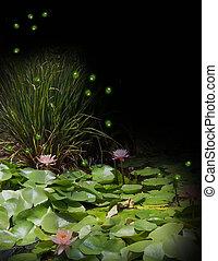 aquarelle, fireflies, nénuphar