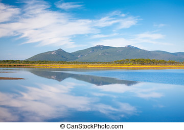 Russian, Primorye, blue reflection - Russian Primorye...
