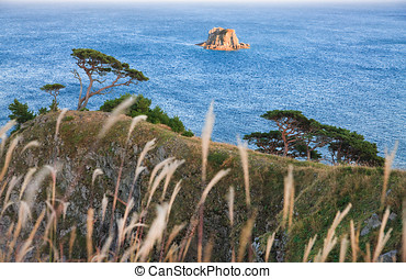 Russia, Primorye, the island and the cedars - Russian...
