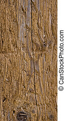 wooden structure with worm wholes in high resolution stich...