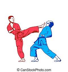 kick and defense - Karate kick and defense isolated