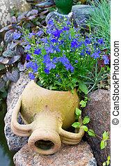 azul, lobelia, jarro