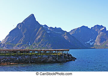 drying of fish with the sea beyond in Lofoten islands,...