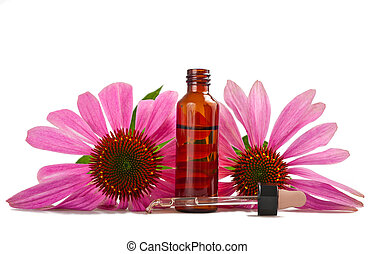 Coneflower - Alternative health whit echinacea flower