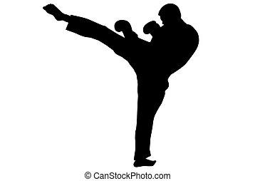 Taekwondo - Black silhouette of karate man prepared for...