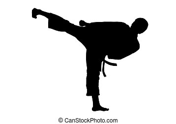 Karate kick - Black silhouette of  karate man kicking high