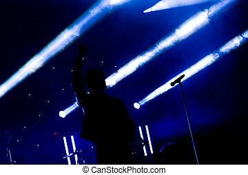 stage performer - singer punching the air during a live...