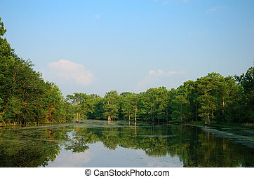 Spring Bayou - Bayou inlet with trees and sky in the...