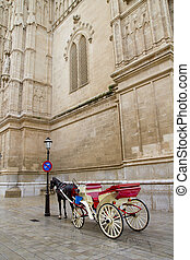 Carriage with horse in Majorca cathedral in Palma de...