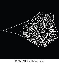 spider web on black