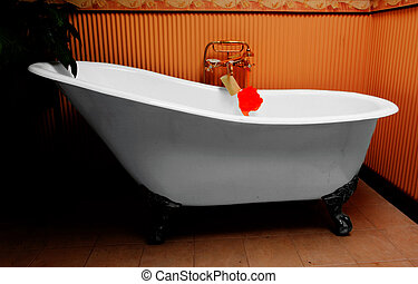 bathtub - old bathtub