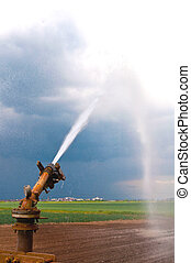 Agriculture water spray - Water spray on an agricultue field