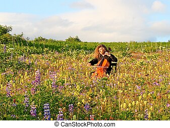 Solo cello concert in the meadow - Man playing cello in a...