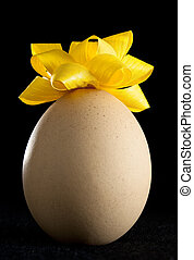 Egg with Yellow Rosette