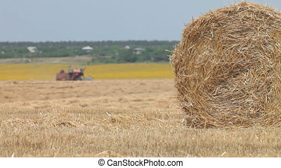 Hay bale - field after harvesting, the Combine harvester...