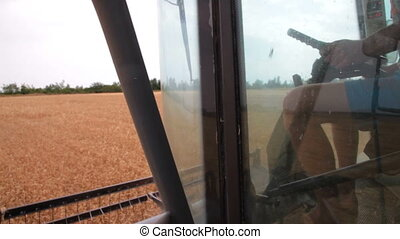 worker driving combine harvester - worker in the cabin of...