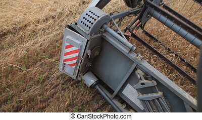 cutting off the wheat - Blades combine harvester cut...