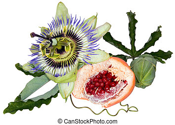 Passion fruit cutout - Passion fruit (Passiflora flavicarpa)...