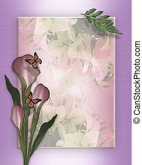 Calla lily and butterflies - Image and illustration...