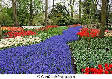 primavera, flor, cama