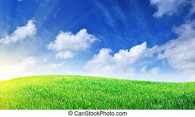 Grass and deep blue sky