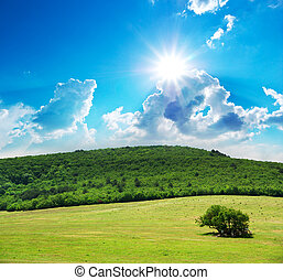 Pasture and sunny sky. Nature composition.