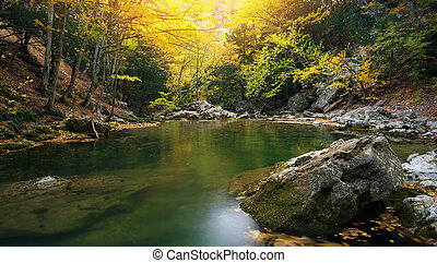 Lake in autumn forest.