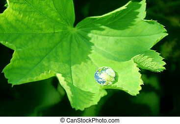 earth in waterdrop reflection on green leaf