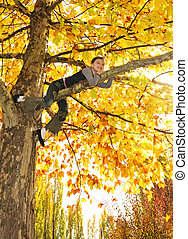 girl hanging from branch of tree
