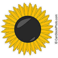 sunflower sign yellow color