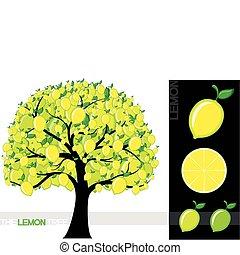 lemon tree - Illustration of a cartoon lemon tree isolated...