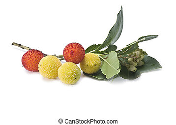 Arbutus. - Fresh arbutus fruits isolated over a white...