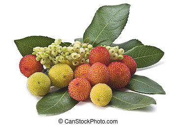 A pile of arbutus with flowers. - Fresh arbutus fruits...