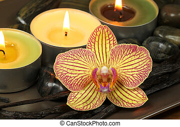 Orchid and vanilla in spa therapy - Orchid flower with...
