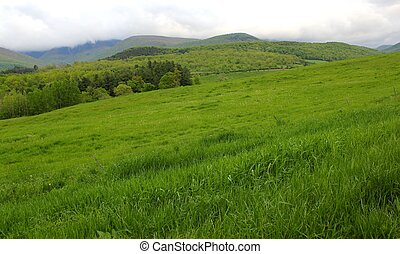 the green hills of the berkshires in western massachusetts