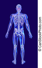 Blue Glass Man with Iridescent Skeleton - Back
