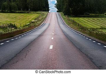 Rural asphalt road in summer landscape