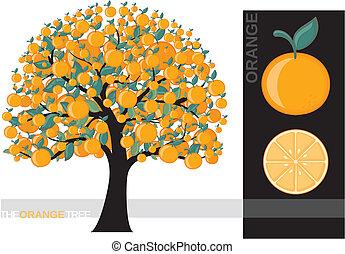 orange tree - Illustration of a cartoon orange tree isolated...