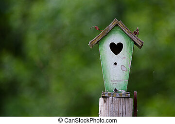 Rustic Birdhouse - An old weathered birdhouse, screwed to a...
