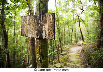 Empty Sign Post - Blank sign post in the jungle with a trail